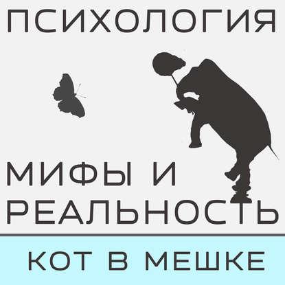 Александра Копецкая (Иванова) Кот в мешке! александра копецкая иванова не такой как все не значит что хуже