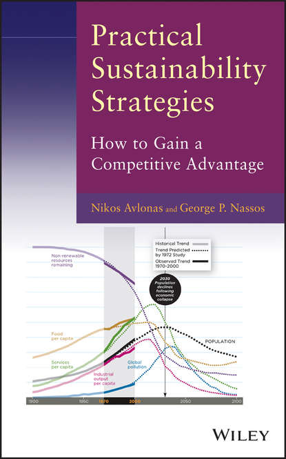 Avlonas Nikos Practical Sustainability Strategies. How to Gain a Competitive Advantage the effects of competitive strategies on banks performance