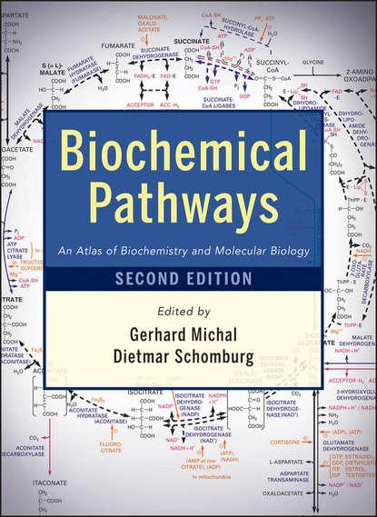 ernest hodgson molecular and biochemical toxicology Schomburg Dietmar Biochemical Pathways. An Atlas of Biochemistry and Molecular Biology