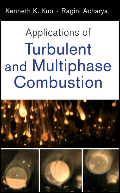Acharya Ragini Applications of Turbulent and Multi-Phase Combustion maximilian lackner combustion from basics to applications