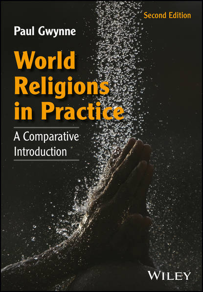 Фото - Paul Gwynne World Religions in Practice helen westgeest video art theory a comparative approach