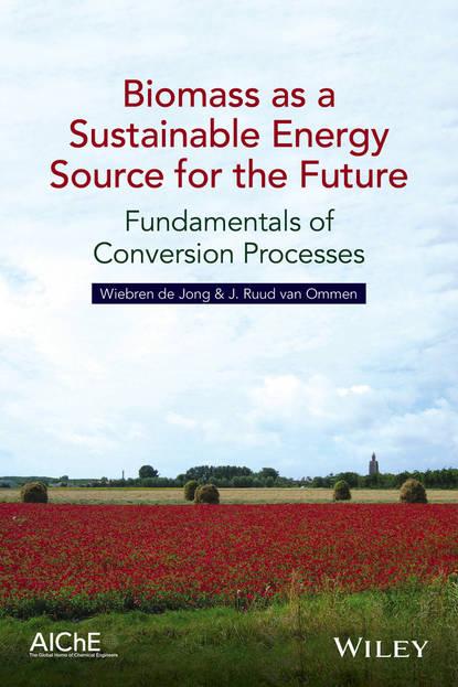 Wiebren de Jong Biomass as a Sustainable Energy Source for the Future недорого