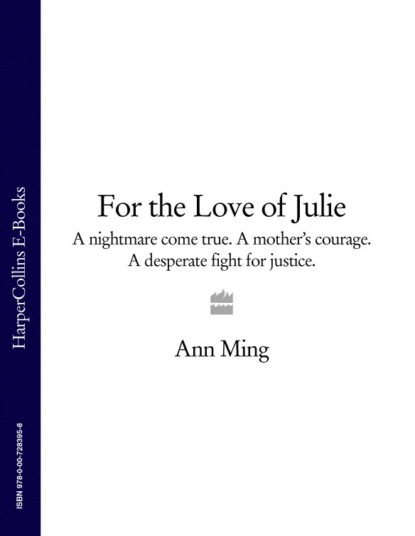 Ann Ming For the Love of Julie: A nightmare come true. A mother's courage. A desperate fight for justice. wendy ann diaz a high price for justice