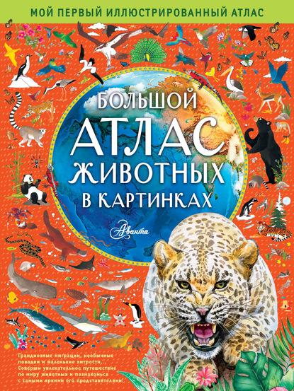 Фото - Эмили Хокинс Большой атлас животных в картинках хокинс эмили уильямс рейчел большой атлас животных в картинках