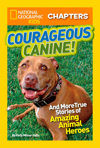 Kelly Halls Milner National Geographic Kids Chapters: Courageous Canine: And More True Stories of Amazing Animal Heroes недорого