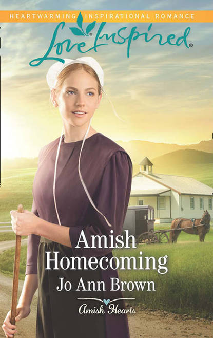 Jo Brown Ann Amish Homecoming andy ezra the universe has your back