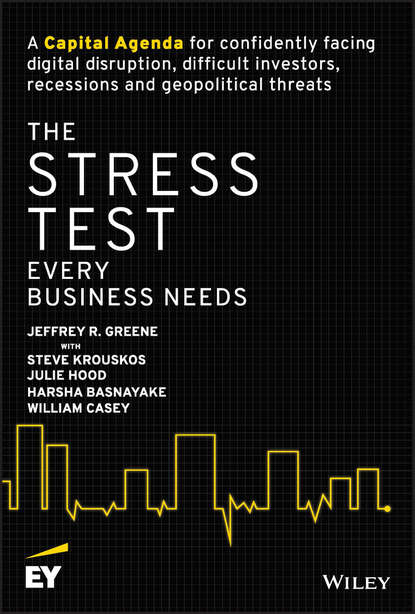 William Casey The Stress Test Every Business Needs value and profits in business strategy