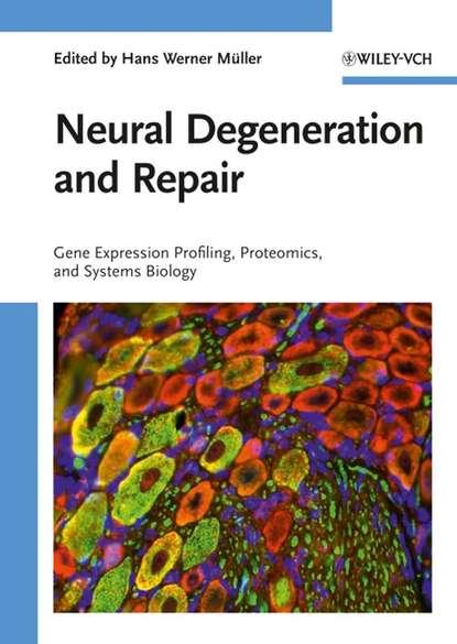 Группа авторов Neural Degeneration and Repair группа авторов transcription factors in the nervous system
