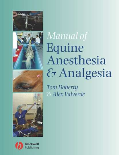 Фото - Tom Doherty Manual of Equine Anesthesia and Analgesia phillip lerche handbook of small animal regional anesthesia and analgesia techniques