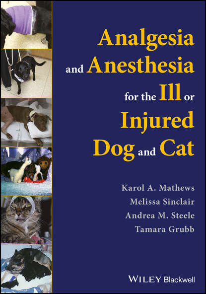 Фото - Melissa Sinclair Analgesia and Anesthesia for the Ill or Injured Dog and Cat phillip lerche handbook of small animal regional anesthesia and analgesia techniques