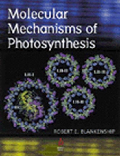 Группа авторов Molecular Mechanisms of Photosynthesis reza razeghifard natural and artificial photosynthesis