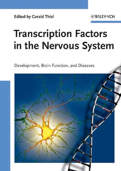 Группа авторов Transcription Factors in the Nervous System группа авторов transcription factors in the nervous system