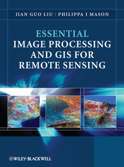 Philippa Mason J. Essential Image Processing and GIS for Remote Sensing недорого