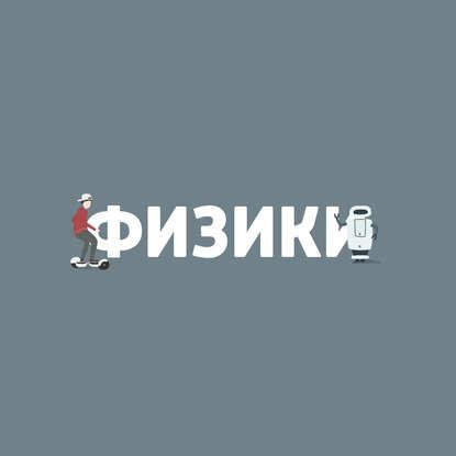 Маргарита Митрофанова Пищевая химия