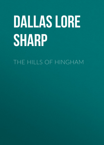 Dallas Lore Sharp The Hills of Hingham недорого
