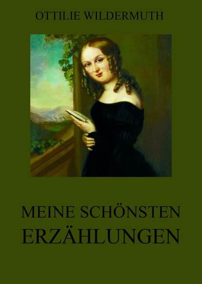 Ottilie Wildermuth Meine schönsten Erzählungen недорого