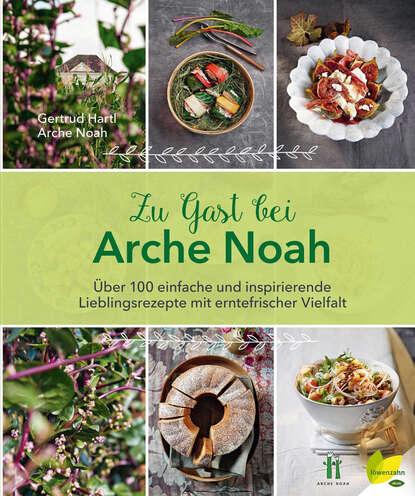 Arche Noah Zu Gast bei Arche Noah arche мокасины
