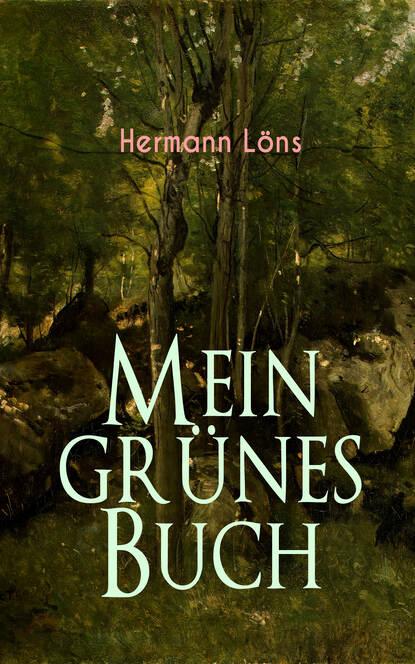 Löns Hermann Mein grünes Buch mein erstes buch vom weihnachtsmann
