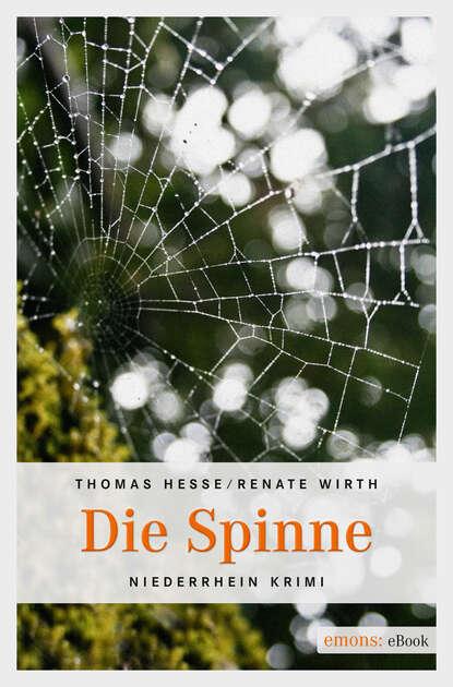 Фото - Thomas Hesse Die Spinne thomas frohling die lotsen