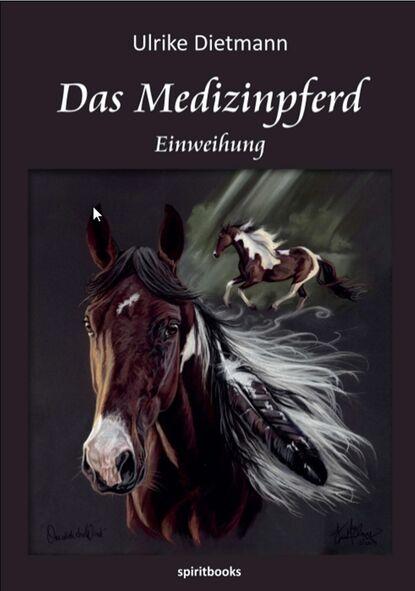Ulrike Dietmann Das Medizinpferd ulrike dietmann on the wings of horses