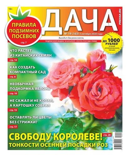 Дача Pressa.ru 19-2020