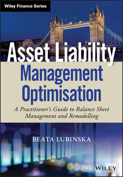 Beata Lubinska Asset Liability Management Optimisation недорого