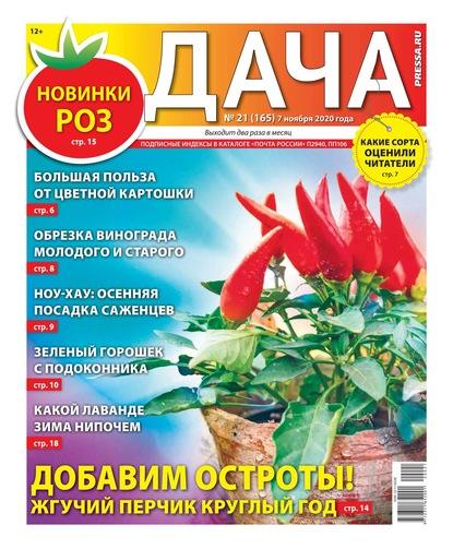 Дача Pressa.ru 21-2020