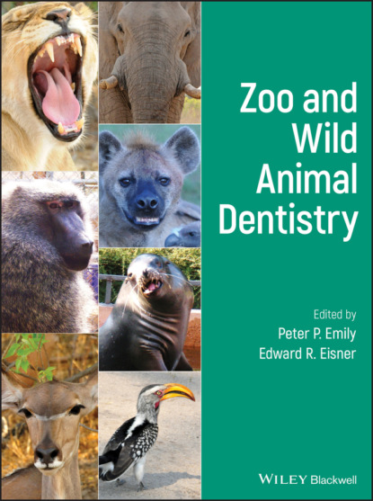 Zoo and Wild Animal Dentistry