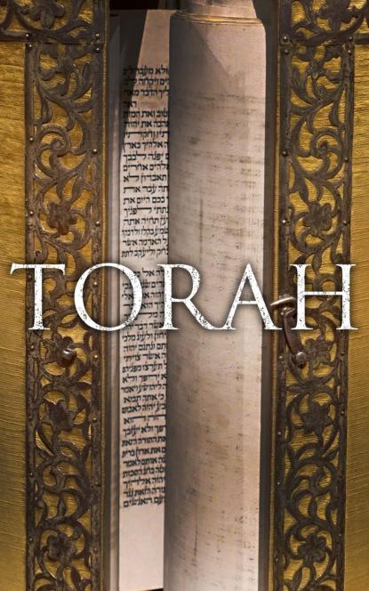 Max Margolis Torah diane bloomfield torah yoga experiencing jewish wisdom through classic postures