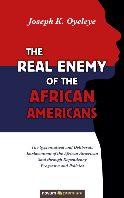 Joseph K. Oyeleye The Real Enemy of the African Americans joseph a fry lincoln seward and us foreign relations in the civil war era