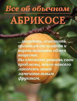 Все об обычном абрикосе
