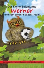 Der kleine Eulenjunge Werner und sein großer Fußball-Traum