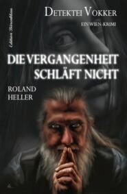 Die Vergangenheit schläft nicht: Detektei Vokker: Ein Wien Krimi