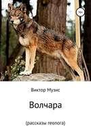 Волчара (рассказы геолога)