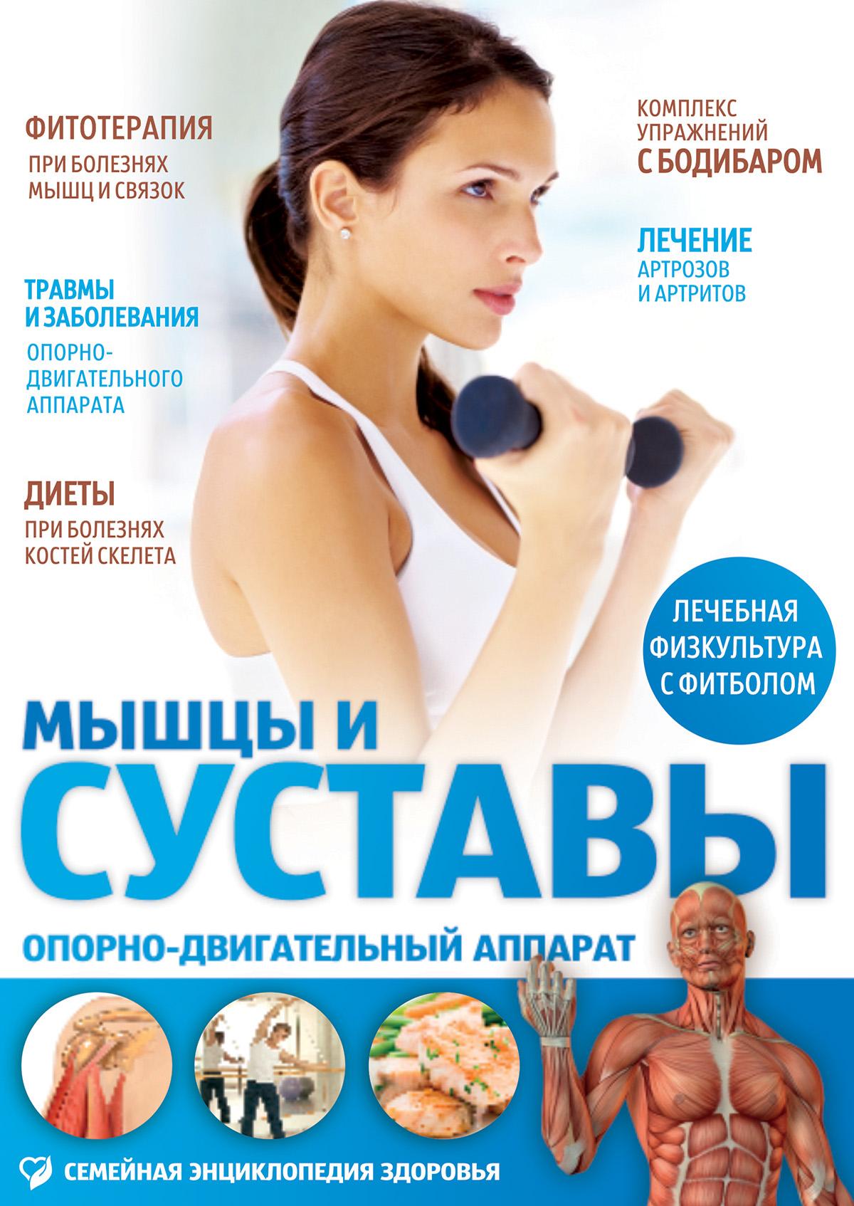 Мышцы и суставы. Опорно-двигательный аппарат