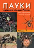 Пауки средней полосы России. Атлас-определитель с обзором биологии