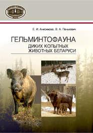 Гельминтофауна диких копытных животных Беларуси