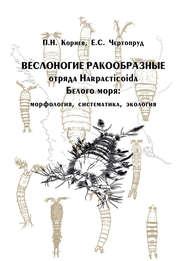 Веслоногие ракообразные отряда Harpacticoida Белого моря: морфология, систематика, экология