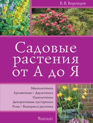 Садовые растения от А до Я