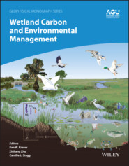 Wetland Carbon and Environmental Management